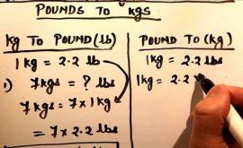 Pound to kg? Cách quy đổi 1 pound = kg