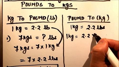 Pound to kg? Kg to pound? Cách quy đổi 1 pound = kg, 1kg = pound